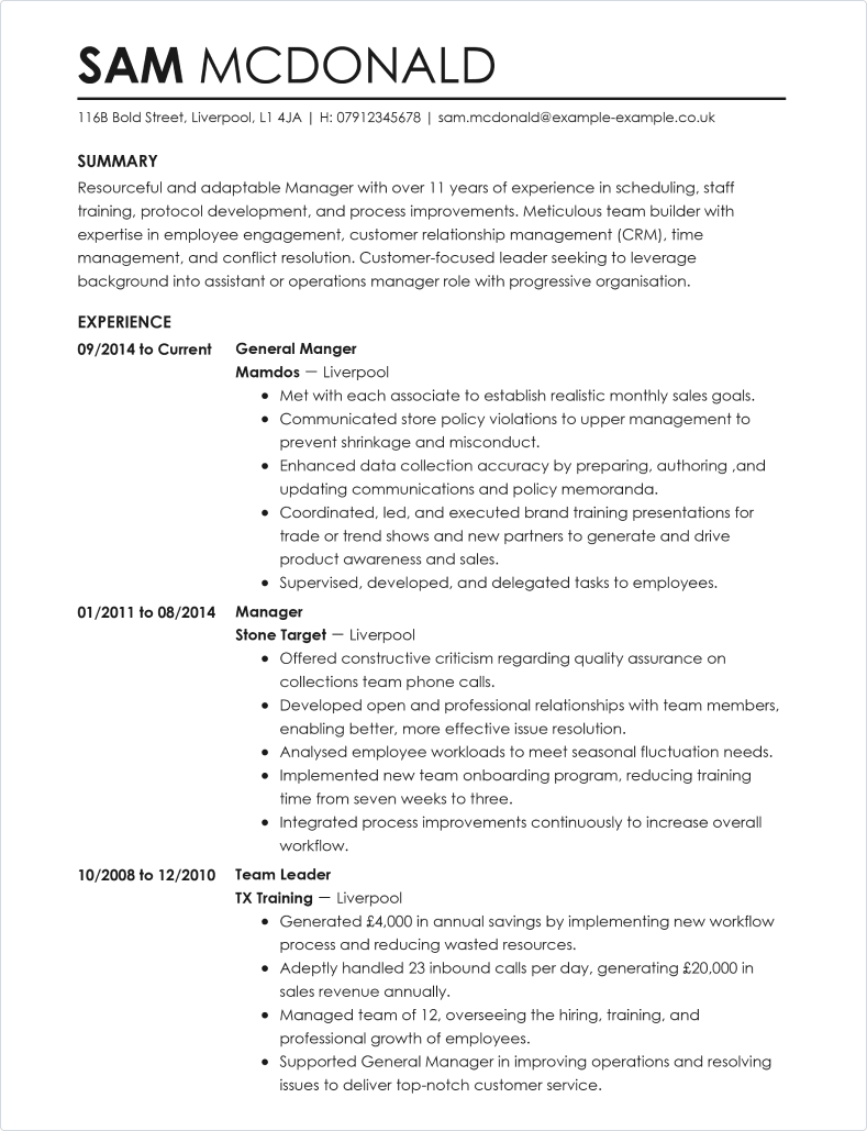 Professional CV template 1