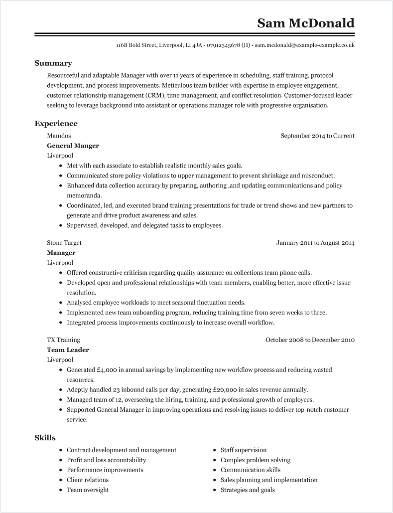 Professional CV template 2