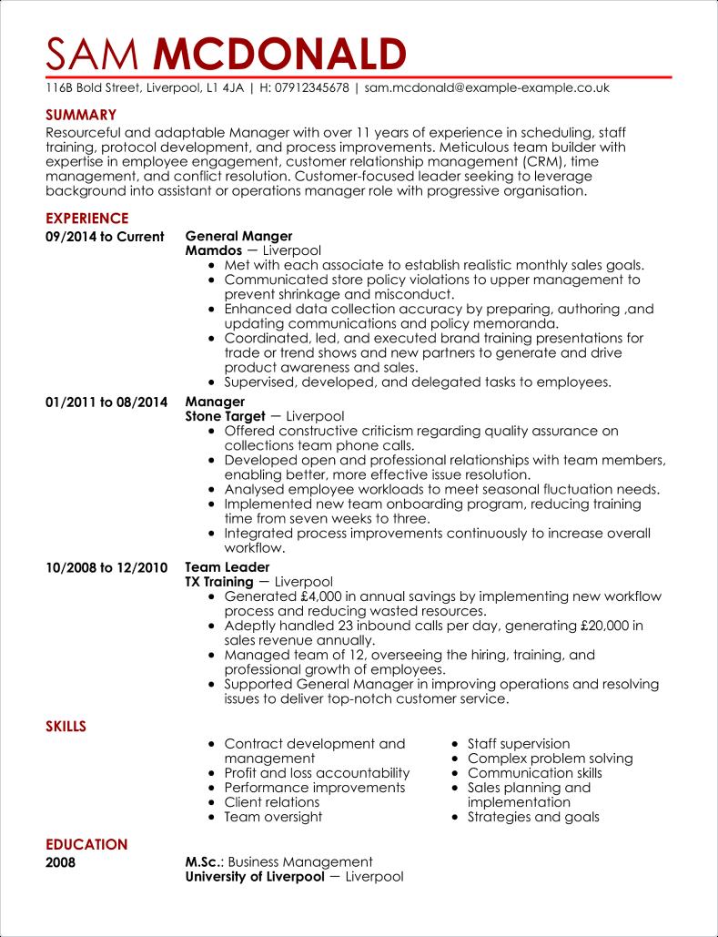 Modern CV template 2