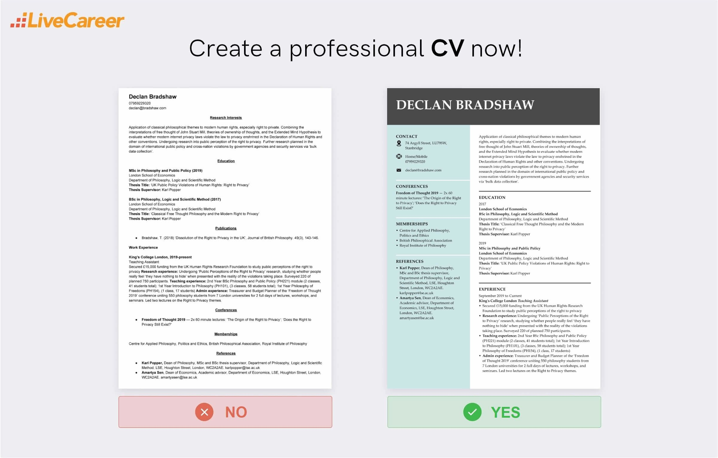 Academic Cv Examples How To Write Template