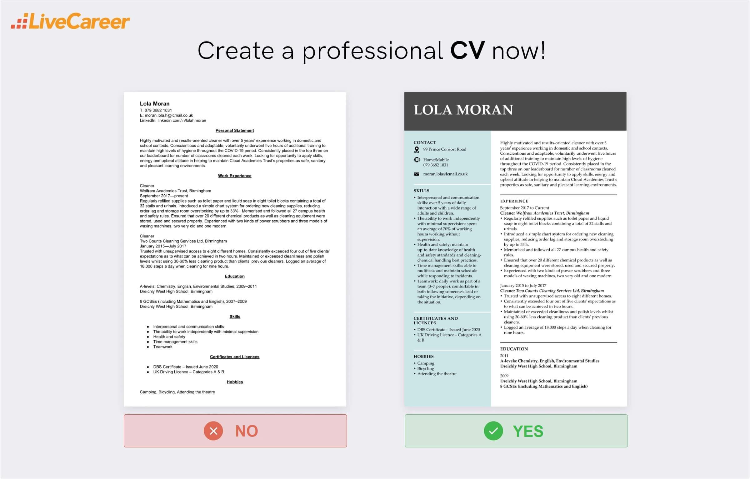 cleaner CV